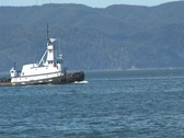 Tugboat on Columbia River near Astoria Stock Footage