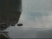 Stock Video Footage of Lake Water Rock Reflect