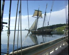 Tall-ship1-lunenburg Stock Footage