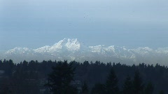 Seattle  WA Olympic Mountians with Birds Static Stock Footage