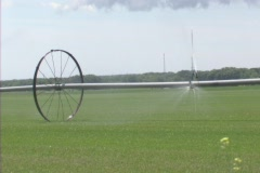 Farm Sprinkler - stock footage