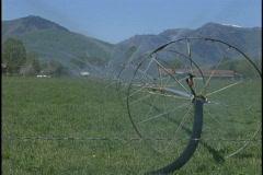farm sprinklers med - stock footage