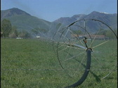 Stock Video Footage of farm sprinklers med