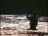 Stock Video Footage of fly fish silhouette CU