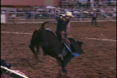 Stock Video Footage of Rodeo Bull Rider Hand Stuck
