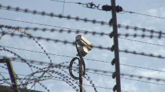 Security camera behind razor-wired prison fence - stock footage