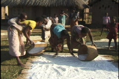 Woman in Malawi sifts corn flour in the village with her neighbors Stock Footage