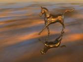 HorseRun 0824 2997 Stock Footage