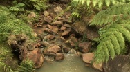 Stream of water Stock Footage