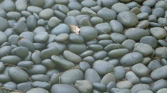 Pile of Smoothe Grey River Rocks - stock footage