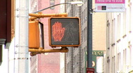 Traffic Light (Stop to Walk) New York (NY057) Stock Footage
