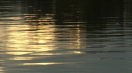 Water reflection Stock Footage