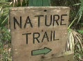 Nature Trail Footage