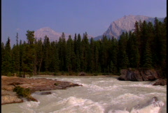 Mt. Stephen and Kicking Horse River Stock Footage