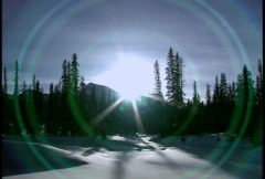 Winter scene with lens flare - stock footage