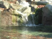 Water Feature or fountain at the zoo Stock Footage