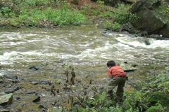 Boy playing dangerously near a fast running river Stock Footage