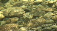 Rocks Shimmer Underwater in Merced River, Yosemite National Park, California Stock Footage