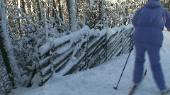 Cross-country skiing two Stock Footage