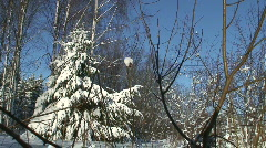 Winter scenics seventeen Stock Footage