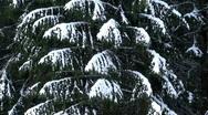 Stock Video Footage of Winter scenics eight