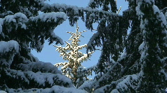 Winter scenics two Stock Footage
