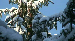 Winter scenics twenty Stock Footage