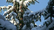 Stock Video Footage of Winter scenics twenty