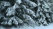 Stock Video Footage of Winter scenics twenty-one