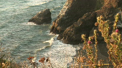 Pacific Ocean Waves Roll Into the Rocky Washington Coastline Stock Footage