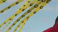 Octopus Kites Flying at Kite Festival in Washington State Stock Footage