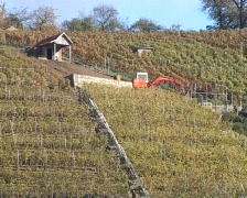 Excavator in a vineyard Stock Footage