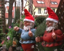 German garden gnome Stock Footage