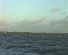Windsurfing on the IJsselmeer Stock Footage