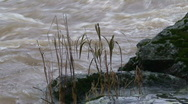 Stock Video Footage of Flooded river surrounded by rock bank, close-up