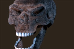 Neanderthal skull Stock Footage