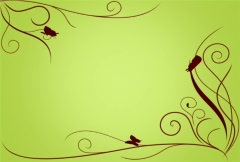 Vines & Butterflies Green SD - stock footage
