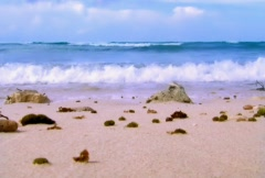 Scenic Waters/MDSW 04 Stock Footage