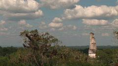 Tikal 6 Stock Footage