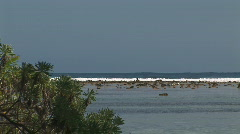 Waves on the reef Stock Footage