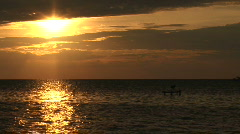 A heron watches the sun heading for the horizon Stock Footage