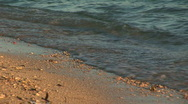 Waves lap on coral beach Stock Footage
