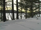 Mother and son walking into snow filled woods alone Stock Footage