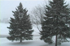 Heavy snow fall up north Stock Footage