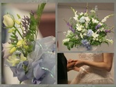 Wedding Flowers Rings Menu Stock Footage