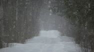 Stock Video Footage of Winter scenic of a blizzard in the park (High Definition)
