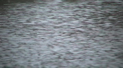 Wind causes surface to ripple and change direction (High Definition) Stock Footage