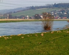 River Weser in high flood Stock Footage