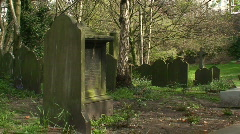 Gravestones in a very old cemetery. HD 1080i Stock Footage