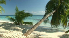 Remote beach with palmtrees Stock Footage